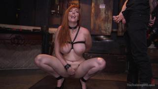 The Training of O Lauren Phillips