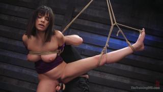 The Training of O – Violet Starr