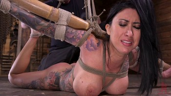 Lily Lane – HogTied